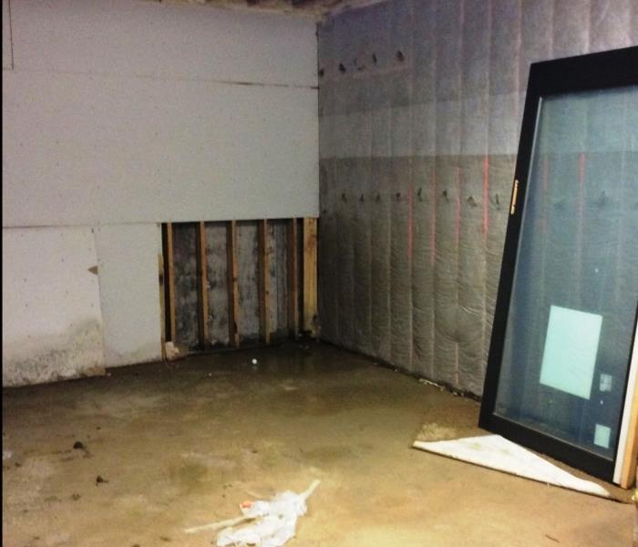 flower mound tx mold removal and mold remediation