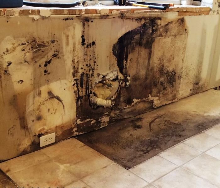 Servpro Of Flower Mound Gallery Photos