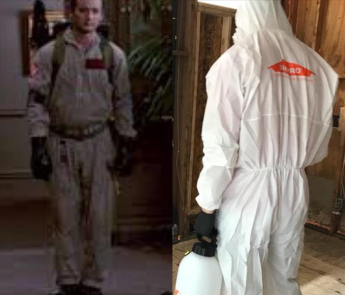 Mold Remediation Who wore it better