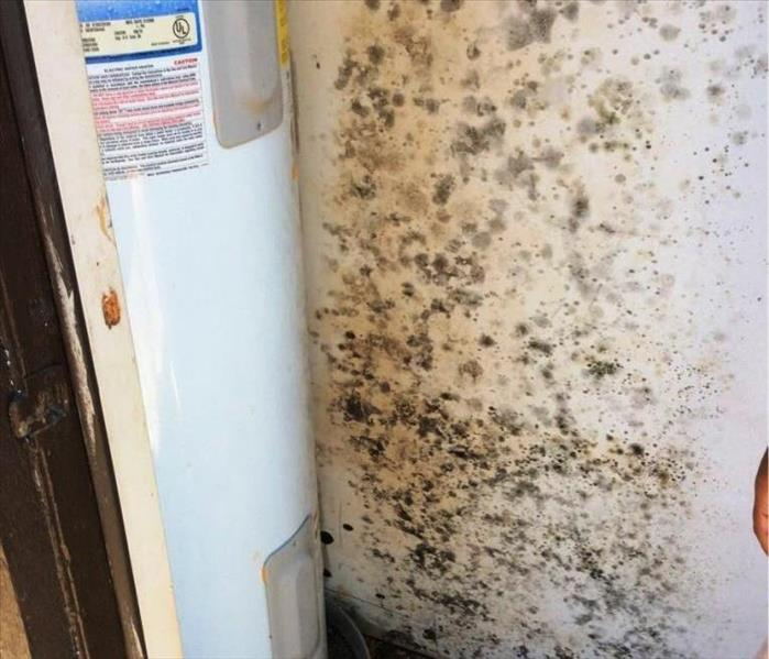 Mold Remediation Residential Mold Remediation Due to a Hot Water Heater Leak