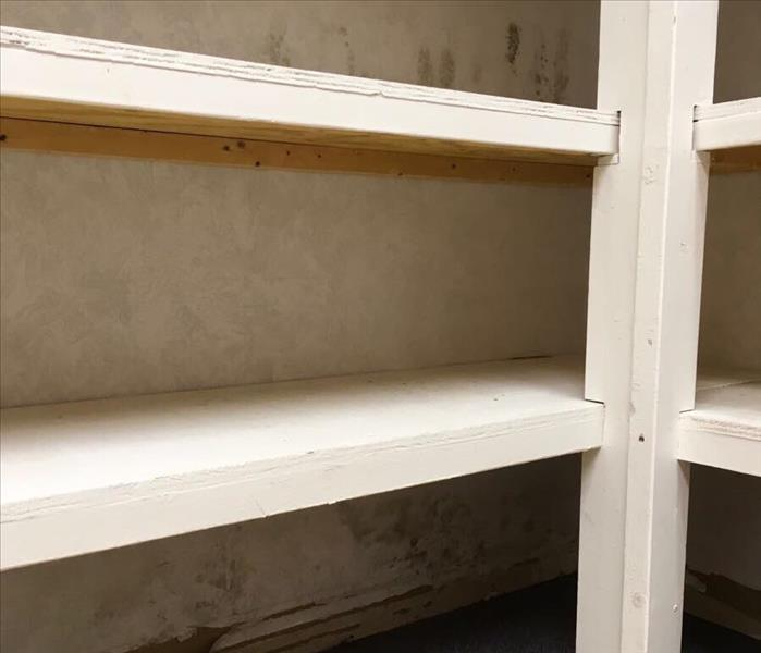 Mold Remediation Improper drying of a structure can lead to microbial growth