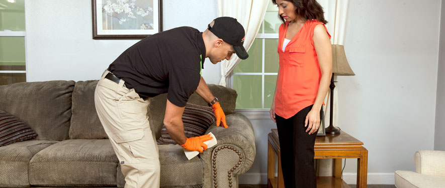 Flower Mound, TX carpet upholstery cleaning