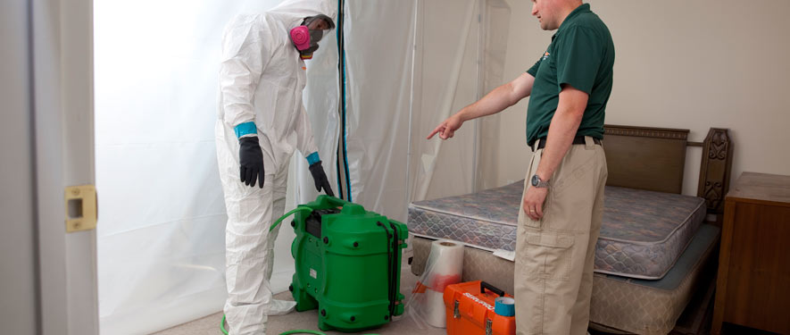 Dallas, TX mold removal process